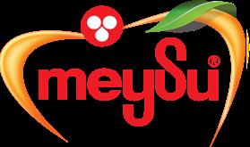 Logo Meysu
